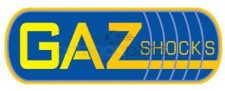 gaz-shocks
